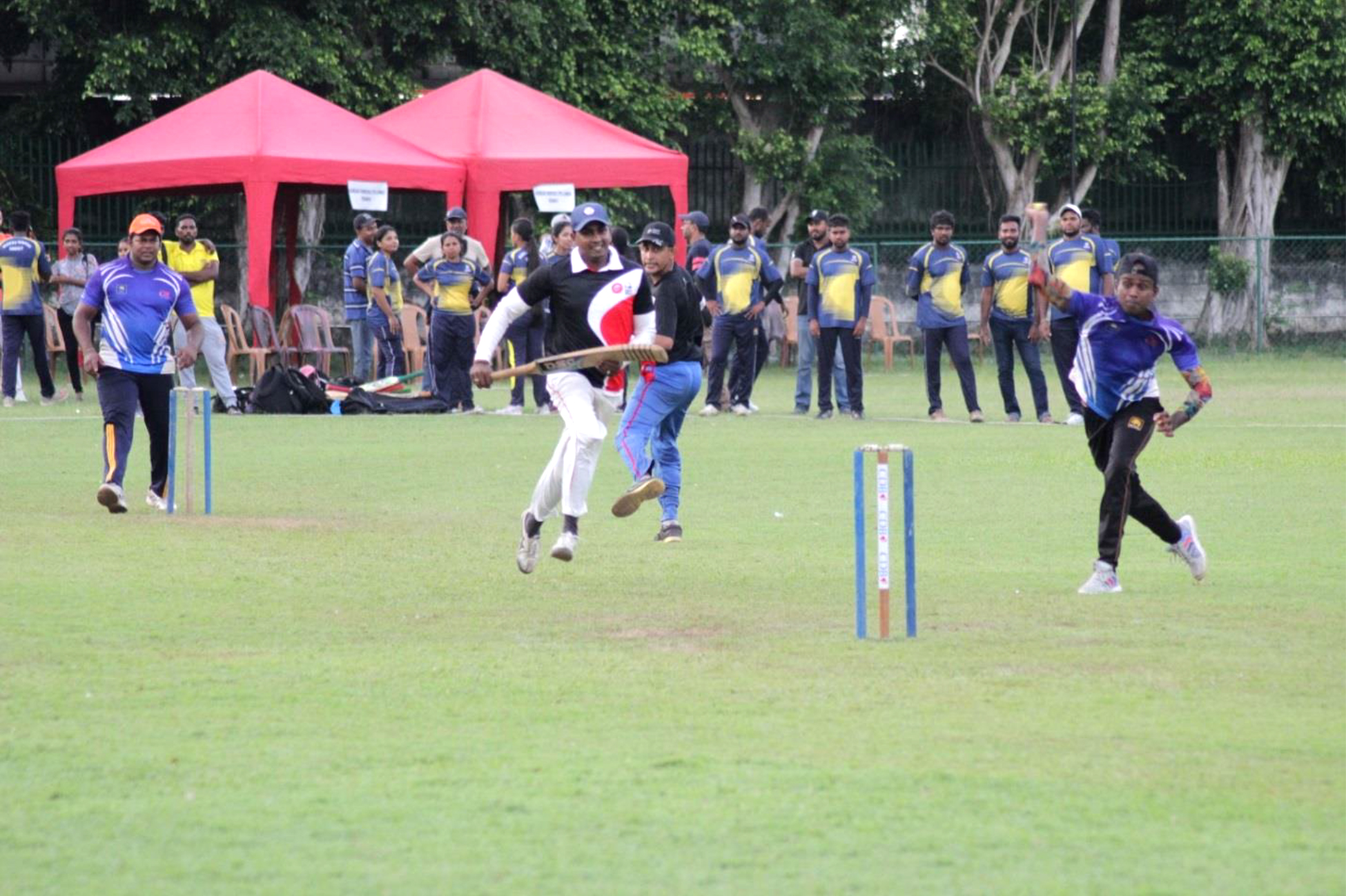Six a side Soft Ball Cricket Tournament